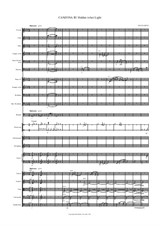 Canzona III Hidden in her Light for orchestra – Score